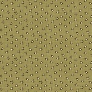 Tessuto in cotone americano - fantasia - stelle - Anni - Downs Filomania