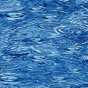 Tessuto Cotone - acqua- blu - Filomania