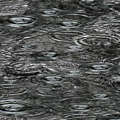 Tessuto Cotone - acqua- grigio scuro - Filomania