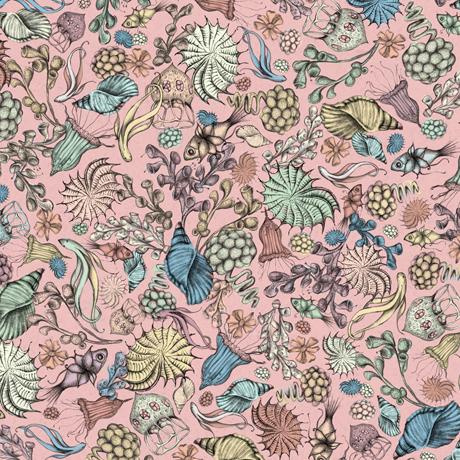 Tessuto Cotone americano - mare - conchiglie - rosa - Filomania