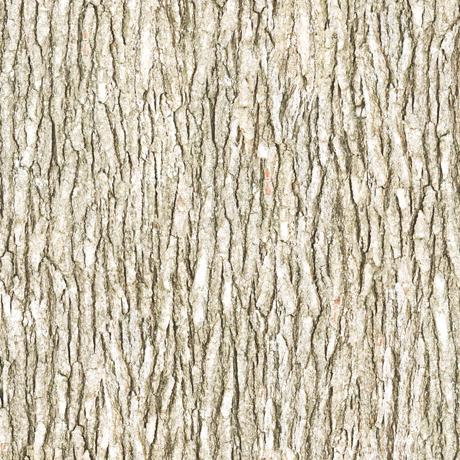 Tessuto Cotone - effetto - legno - beige - Filomania