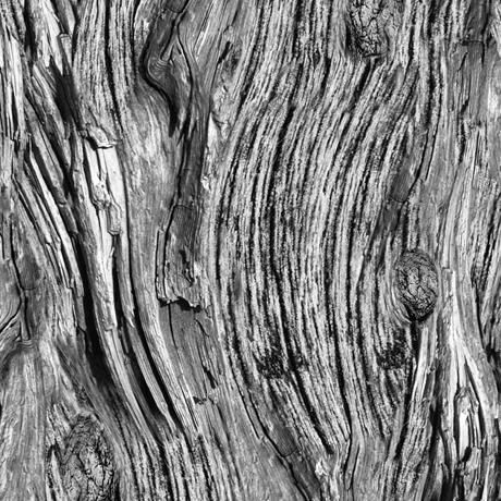 Tessuto Cotone - effetto - legno - grigio - Filomania