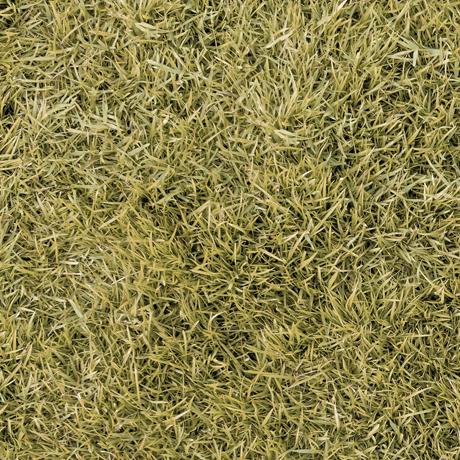 Tessuto in cotone americano - erba - prato - secco - Filomania