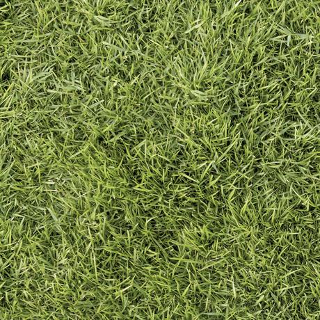 Tessuto in cotone americano - erba - prato - verde - oliva - Filomania
