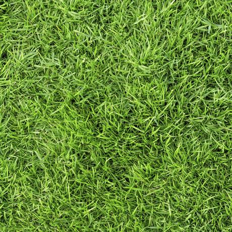 Tessuto in cotone americano - erba - prato - verde - primavera - Filomania