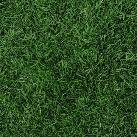 Tessuto in cotone americano - erba - prato - verde - scuro - Filomania