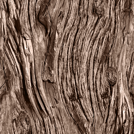 Tessuto in cotone americano - legno - marrone - Filomania