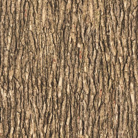 Tessuto in cotone americano - legno - marrone - medio - Filomania
