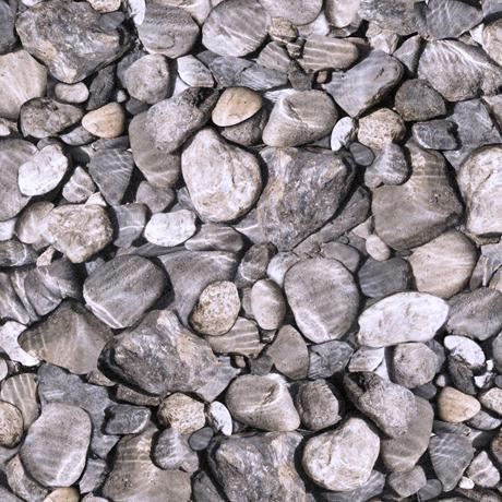 Tessuto in cotone americano - sassi - grigio - Filomania