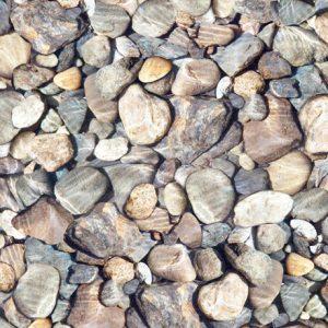 Tessuto in cotone americano - sassi - grigio - azzurro - Filomania